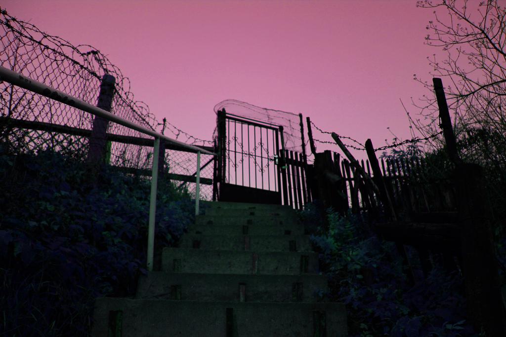 Foto Mayko Gate of Wonderworld