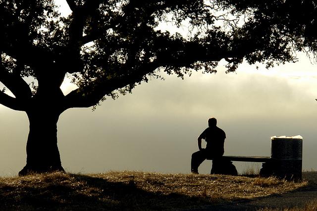 foto Andrew Hart Reflecting mann sitzt nachdenklich neben einem baum und blickt in das tal